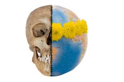Totenkopf, Totenschädel - auf der einen Seite der Globus, Weltkugel mit Blumenkranz  - Symbol für Verseuchung des Globus durch Pestizide aus der Chrysantheme