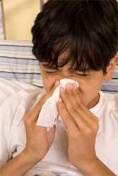 Allergien therapieren