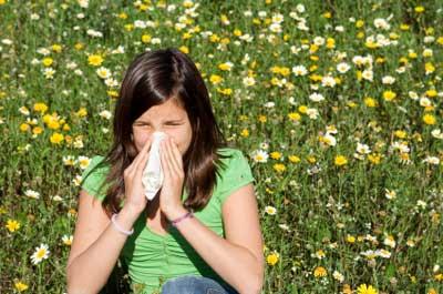 Heuschnupfen, schwere Zeit für Allergiker